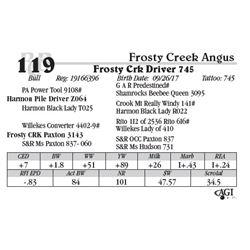 Lot 119 - Frosty Crk Driver 745