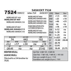 5ASH EXT 7524