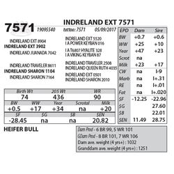 INDRELAND EXT 7571