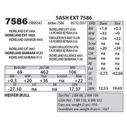 5ASH EXT 7586