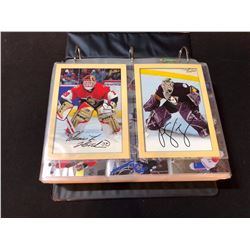 BINDER OF VARIOUS NHL CARD COLLECTIONS INC. BLACK DIAMOND, BEE-HIVE JUMBO CARDS AND MORE