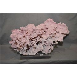 "Large piece of pink coral mounted on clear plexi base, 21"" wide and 12"" in height"