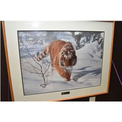 "Framed limited edition print ""Tyger ! Tyger!"" pencil signed by artist Terry Isaac, 564/950"