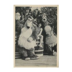 "Disneyland ""Jungle Book Days"" Photo Card."