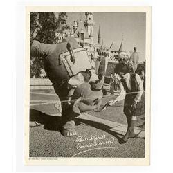 """""""Fantasy on Parade"""" Photo Card."""