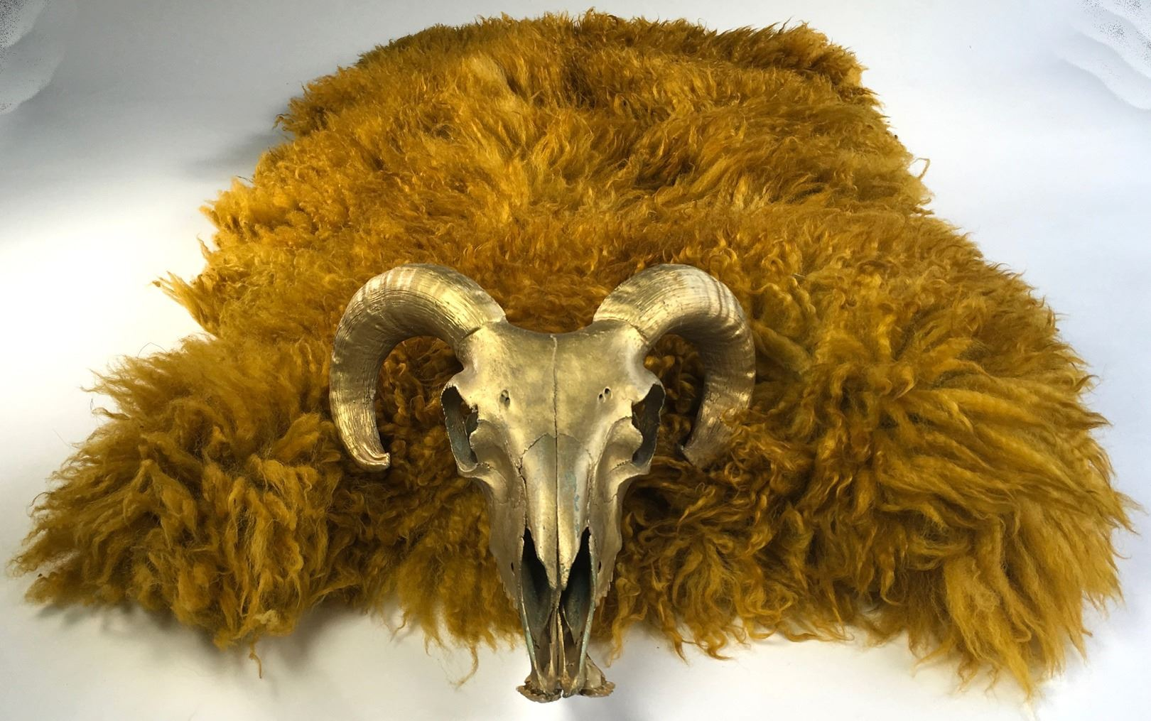 """Rumplestiltskin"" gold ram's skull and golden fleece from Once Upon a Time  Season 2, Episode 19"