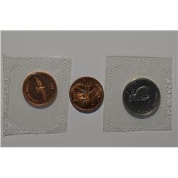 WYSIWYG Can Coins