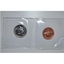 1967 - WYSIWYG Can Coins