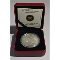 2013 $100 Silver Bison Coin