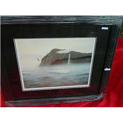 FRAMED LIMITED EDITION PRINT - SPIRIT OF HAIDA GWAII - C MacCLUE - ESTIMATED GALLERY PRICE $550