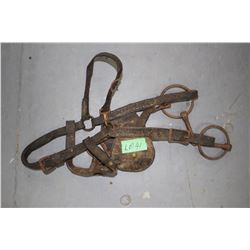 Old Horse Bridle w/Snaffle Bit