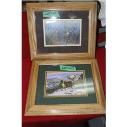 2 Deer Prints - Under Glass w/Oak Frames