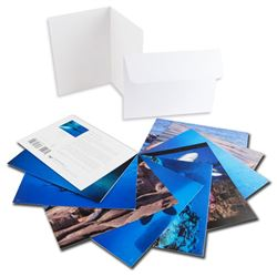 10 PK of Assorted Wyland PHOTO Notecards by Wyland