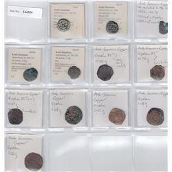 ARAB-SASANIAN: LOT of 12 copper pashiz of various types