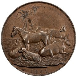 BURMA: AE medal, 1865, Agricultural and Horticultural Society, VF