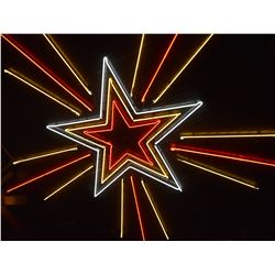 Threadgill's Famous Neon Star Celing Sign