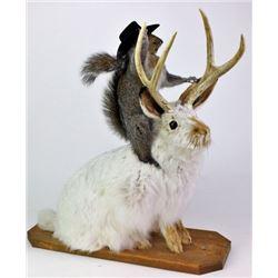 Mounted jackalope with buckaroo squirrel