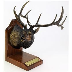 "Bronze ""Boone and Crockett #3 419 6/8"""