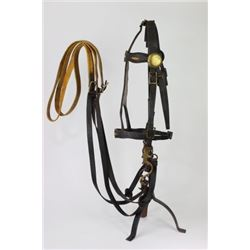 C. 1850's cavalry officers Dragoon May bit