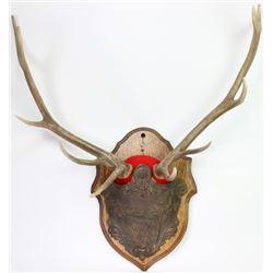 Rare 19th C. cast iron and oak horn pocket plaque