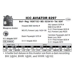 ICC AVIATOR 8297