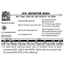 ICC AVIATOR 8284
