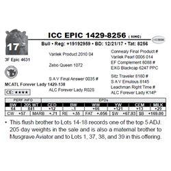 ICC EPIC 1429-8256 ( NHC)