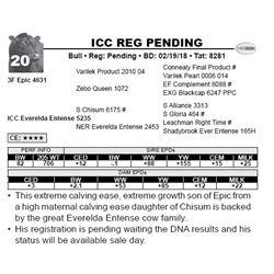 ICC REG PENDING