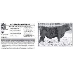 ICC MASTER PLAN 8315