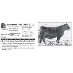 ICC MASTER PLAN 730-8310