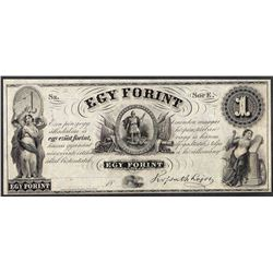 1800's $1 Egy Forint Obsolete Note
