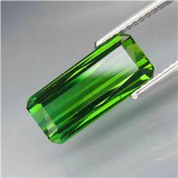 Natural Top Green Tourmaline 3.73 Ct