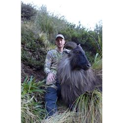 New Zealand Custom Outfitters Tuhr Hunt