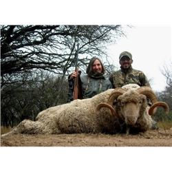 ARGENTINA - 7 DAY HUNT FOR 2 HUNTERS FOR 3 TROPHIES EACH