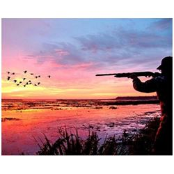 MARYLAND - TWO DAY WATERFOWL HUNT FOR FOUR HUNTERS