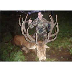NEW ZEALAND - 5 DAY 2X1 RED STAG & FALLOW STAG HUNT FOR 2 HUNTERS