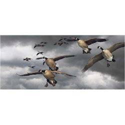 SE MICHIGAN – GUIDED GOOSE HUNT FOR FOUR HUNTERS