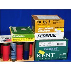 Assorted  12 and 20 Ga Ammo.