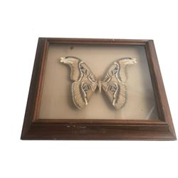 Silence of the Lambs Taxidermy Moth Movie Props