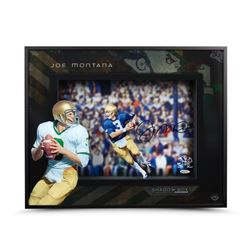 "Joe Montana Signed ""Roll Out"" Notre Dame 20x16x2 Custom Framed Shadow Box (UDA COA)"
