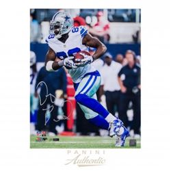 """Dez Bryant Signed Cowboys """"Completion"""" 16x20 Limited Edition Photo (Panini COA)"""