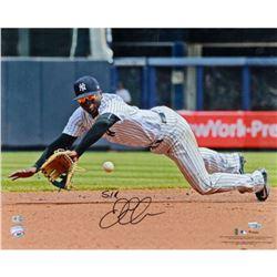"Didi ""Sir Didi"" Gregorius Signed Yankees ""Fielding"" 16x20 Photo (Fanatics  MLB Hologram)"