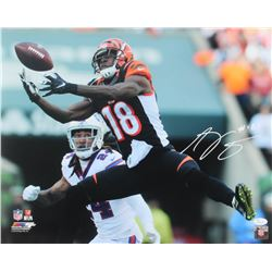 A.J. Green Signed Bengals 16x20 Photo (JSA COA)