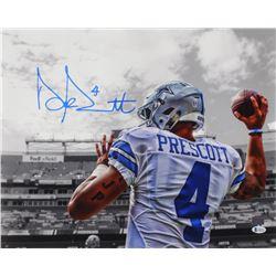 Dak Prescott Signed Cowboys 16x20 Photo (Beckett COA  Prescott Hologram)