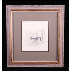 Original Ron Bailey Framed Doe Pencil Scetch