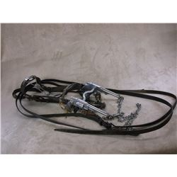 Antique Tooled Headstall With Reins, Rein Chains and Tie Down- Nickel Conchos- Ricardo Marked Pistol