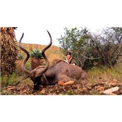 7-day South Africa Plains Game Hunt Including Taxidermy for One Hunter and One Observer