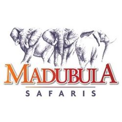 Madubula Safaris Plains Game Hunt