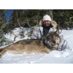 6 night 5 day Wolf Hunt with KapRiver Outfitters in Kapuskasing, Ontario