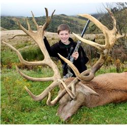 Red Deer Trophy hunt with Clarence Valley Trophy Hunting New Zealand